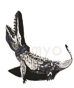 artwork-crocodile-black-white-rishit